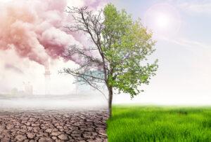 ERMI and CIC launch environmental captive insurance program
