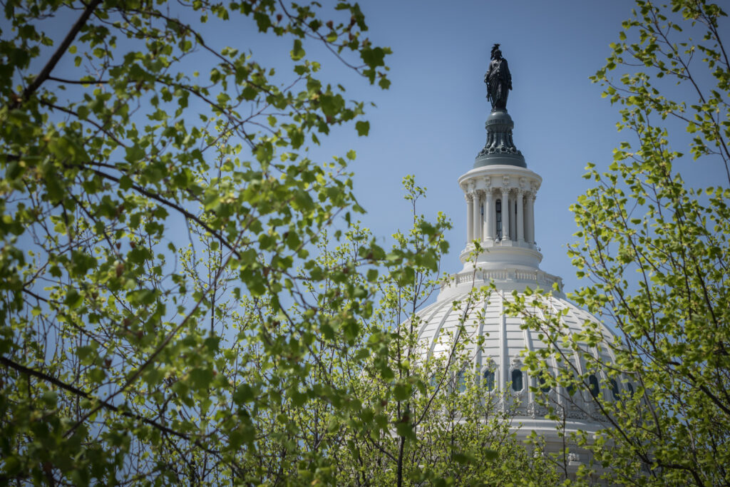 Small Businesses Achieve Legal Victories During 2020 U.S. Supreme Court Term